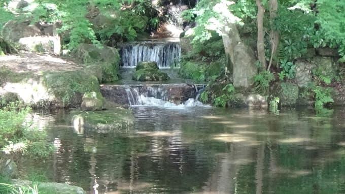 岐阜公園内の風景写真