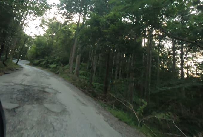 池田山の山道の写真