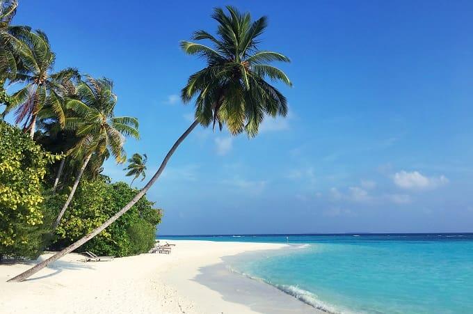 夏のビーチのイメージアイキャッチ画像