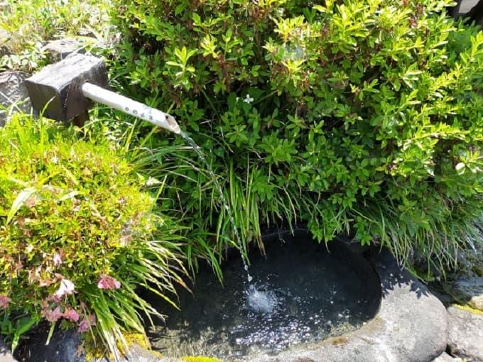 郡上八幡の湧き水の写真