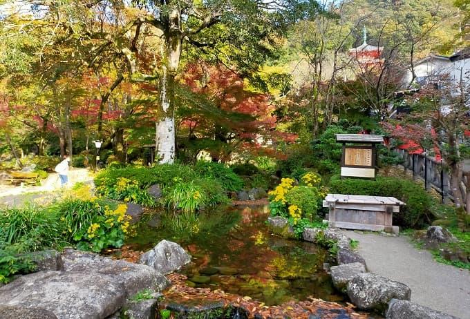 岐阜公園の紅葉写真