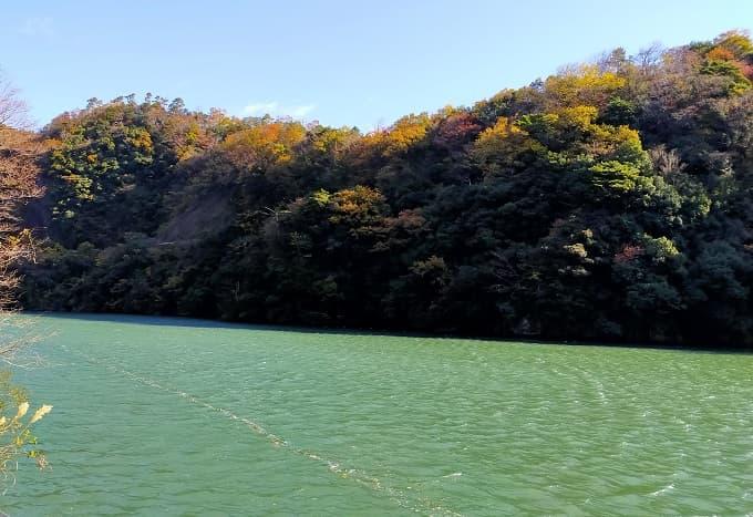 揖斐川の紅葉写真