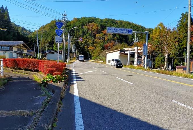 国道257号線の紅葉写真