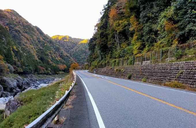 国道41号線の紅葉写真
