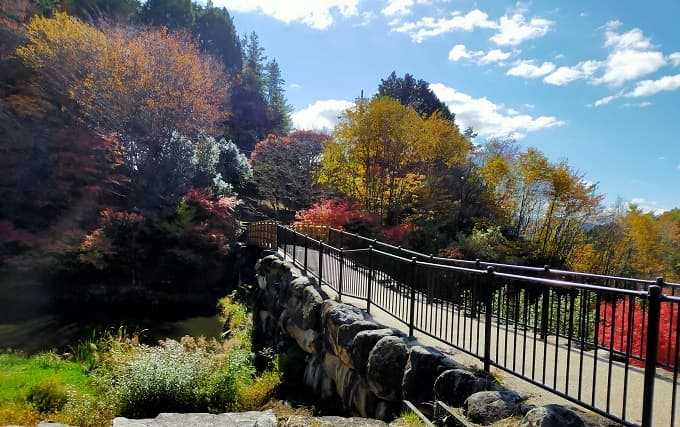 島田公園の紅葉写真