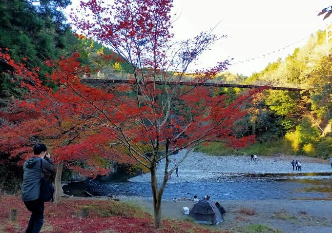 多良峡の紅葉写真