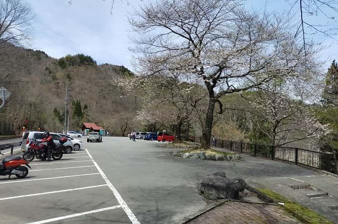 荘川桜公園の駐車場
